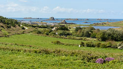 Scilly Isles, May 2019